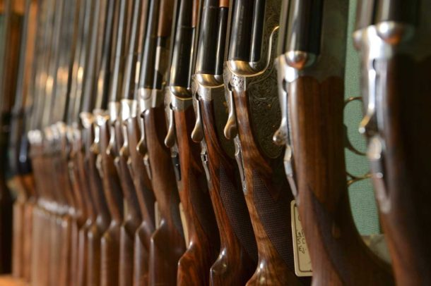 Read more about the article Armes de Chasse